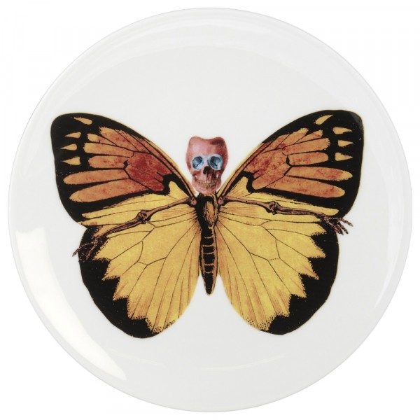 Lepidoptera Croceus Plate by The New English