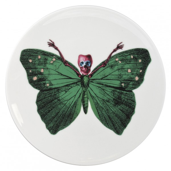 Lepidoptera Crudus Plate by The New English