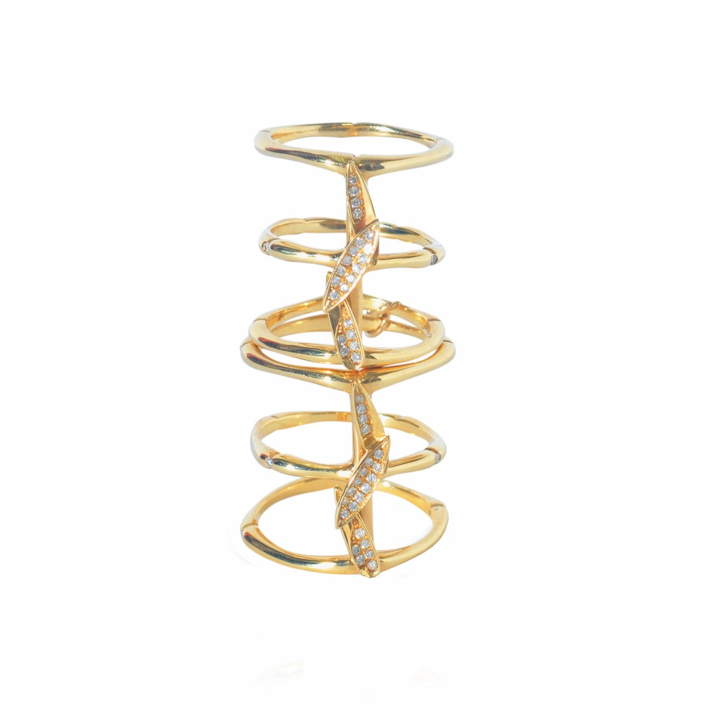 Bamboo Leaves Full Finger Ring in Gold by Vara Of London