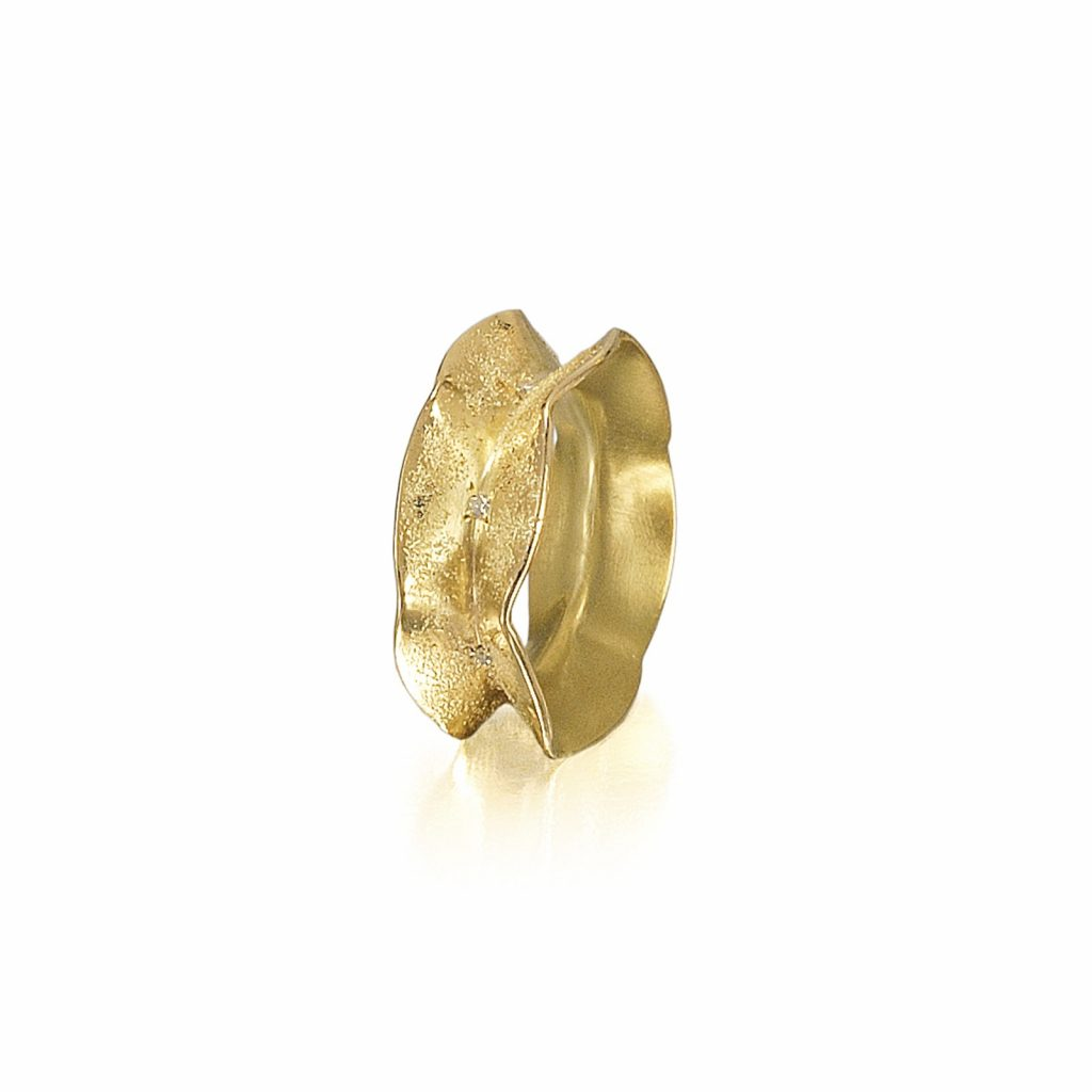 Interference and Stardust Ring by Rose Carvalho