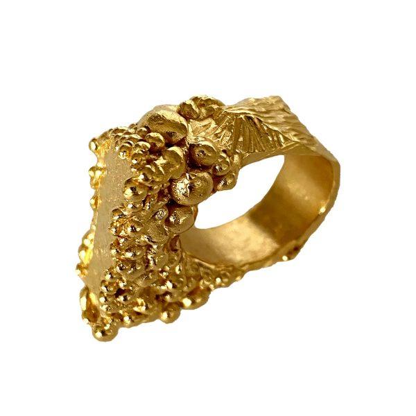 Celestial Ring by Imogen Belfield